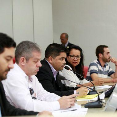 Jesuíno Boabaid preside Audiência Pública para discutir infestação do mosquito mansonia