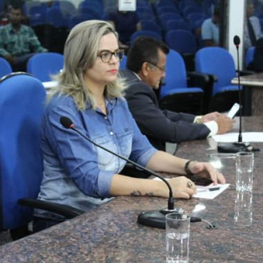 ESTRADA DA PENAL: Vereadora Ada Dantas Boabaid solicita instalação da rede baixa de energia elétrica
