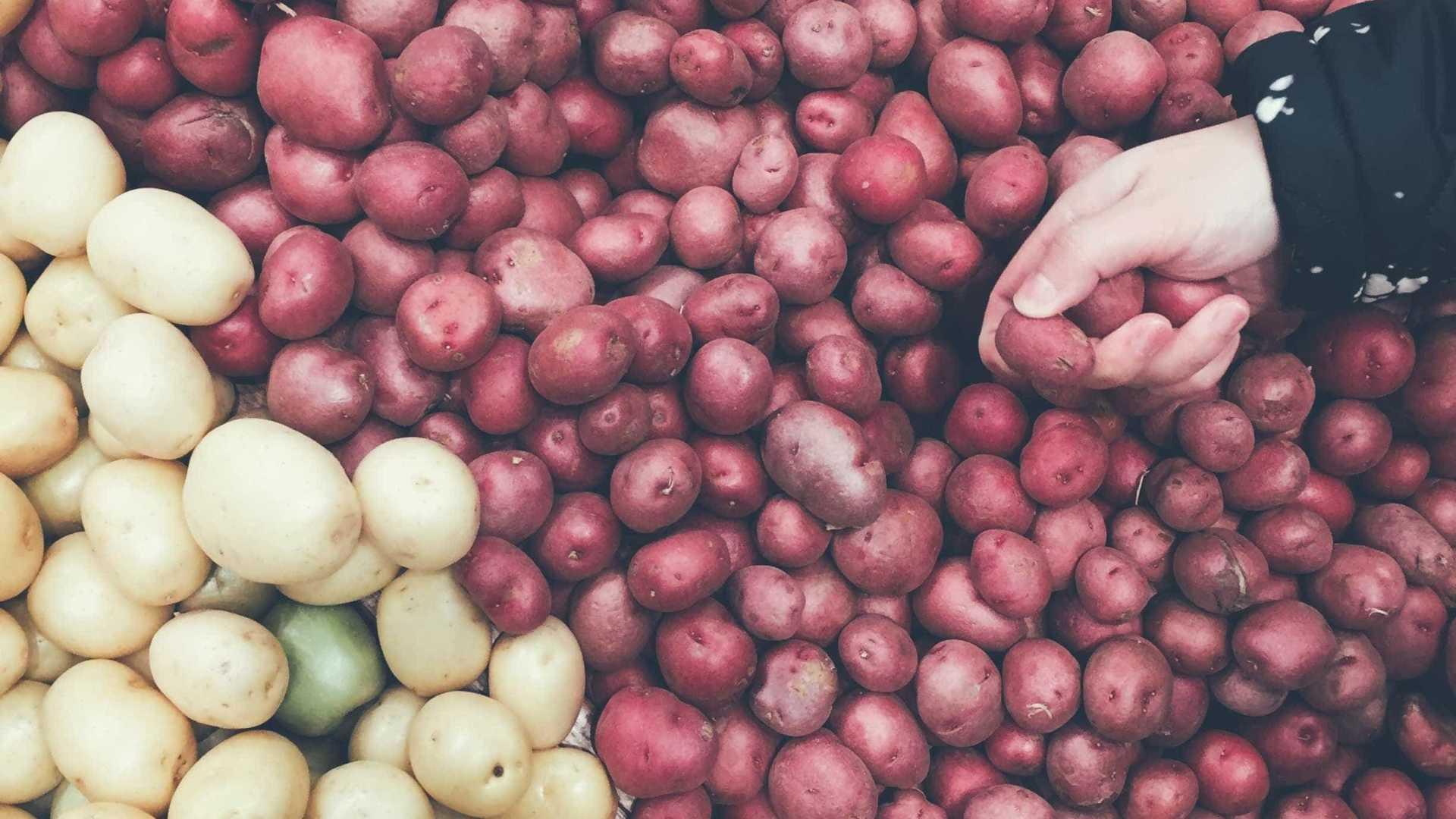 Descubra o que aconteceria se durante 1 ano você só comesse batata