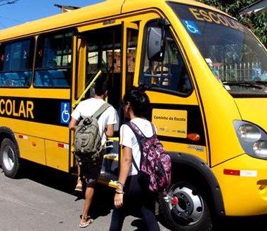 Justiça libera valores retidos e transporte deve ser regularizado em até sete dias