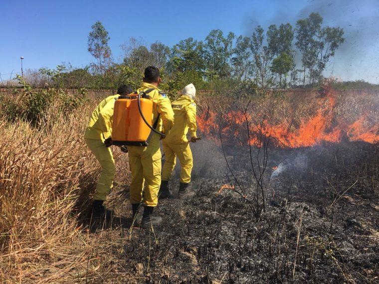 Corpo de Bombeiros Militar e Sedam intensificam ações de orientação e fiscalização no combate às queimadas