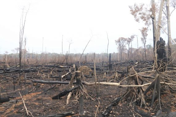 Governo e 17ª Brigada começam a ajustar medidas preventivas para conter índices de queimadas