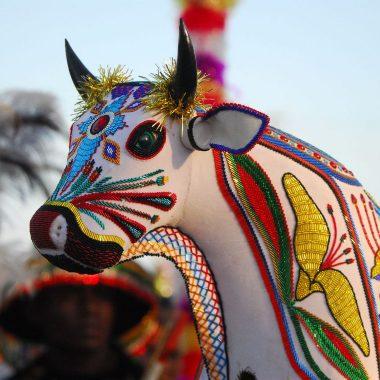 Bumba Meu Boi do Maranhão se torna Patrimônio Cultural da Humanidade