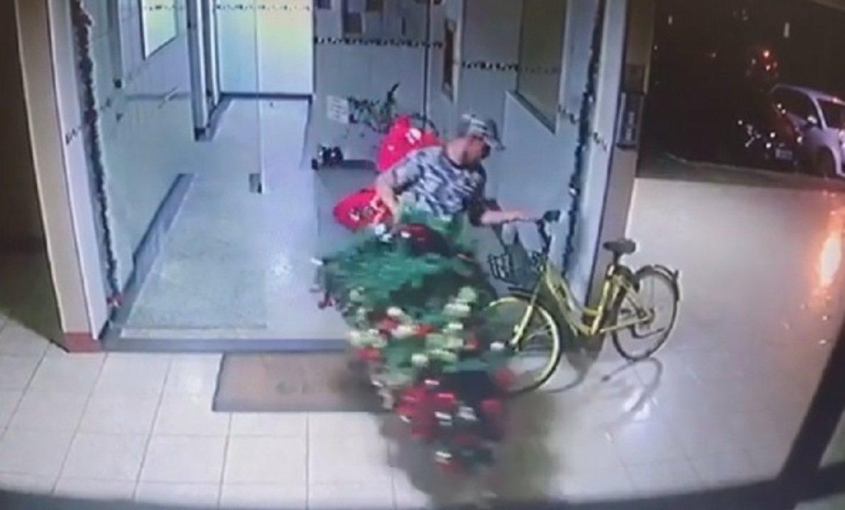 Homem é flagrado invadindo prédio e furtando árvore de Natal