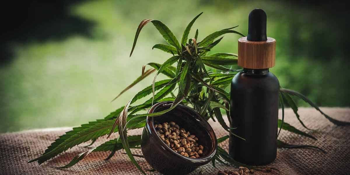 Agência Nacional de Vigilância Sanitária libera venda de produtos à base de cannabis em farmácias