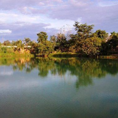Para aderir ao Programa de Regularização Ambiental, produtor tem até o final de 2020 para fazer o Cadastro Ambiental Rural