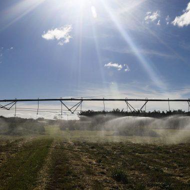 Termina hoje prazo para produtores aderirem ao Refis Rural