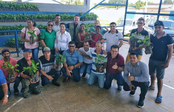 Governo de Rondônia entrega mais de 12 mil mudas de café clonal para produtores de Candeias do Jamari