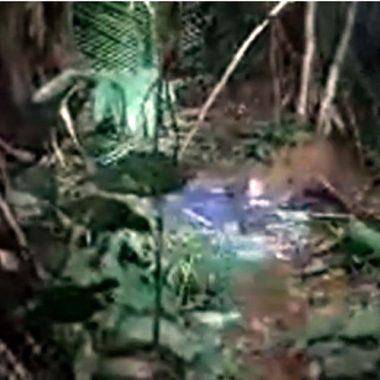VIOLÊNCIA – Corpo de jovem desaparecido há duas semanas é encontrado desovado em matagal