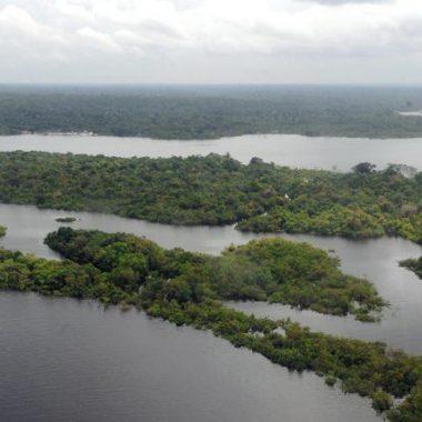 Bolsonaro anuncia criação de Conselho da Amazônia e Força Nacional Ambiental