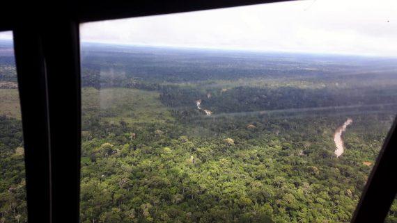 Projeto de crédito de carbono do Parque Estadual de Guajará-Mirim é enviado à Assembleia Legislativa