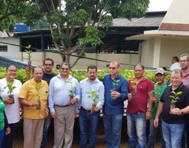 Governo entrega mudas de café clonal para cinco produtores rurais de Guajará-Mirim