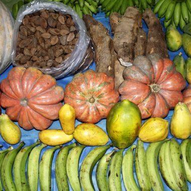 Exército abre chamada pública para compra de mais de R$ 1,3 milhão em produtos da agricultura familiar em Porto Velho