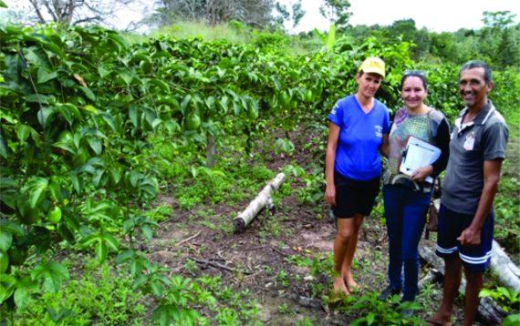 Programa de fomento garantiu renda às famílias no município de Presidente Médici