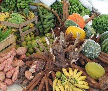 Chamamento público para aquisição de alimentos da agricultura familiar em Porto Velho terá abertura no próximo dia 14