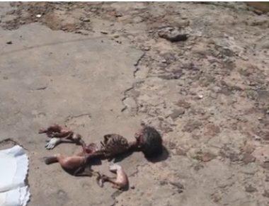 MACABRO – Cadáver de criança ê devorado por urubus no portão do cemitério