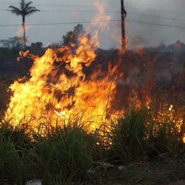 Portaria suspende por 30 dias uso do fogo controlado para limpeza de áreas em Rondônia