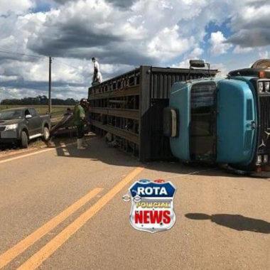 Caminhão boiadeiro tomba na BR-435 entre Vilhena e Colorado