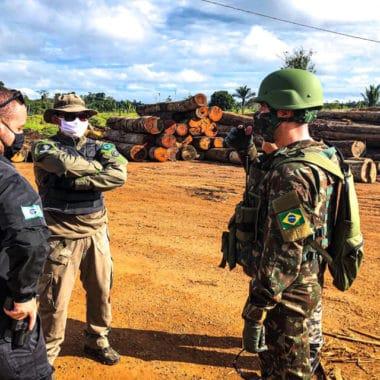 Operação da PF desmonta organização criminosa de exploração ilegal de madeira