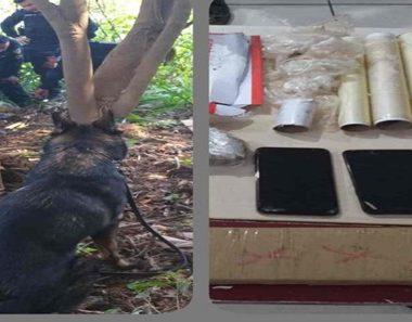 Polícia prende 08 pessoas e quase 02 kg de maconha no bairro Nacional