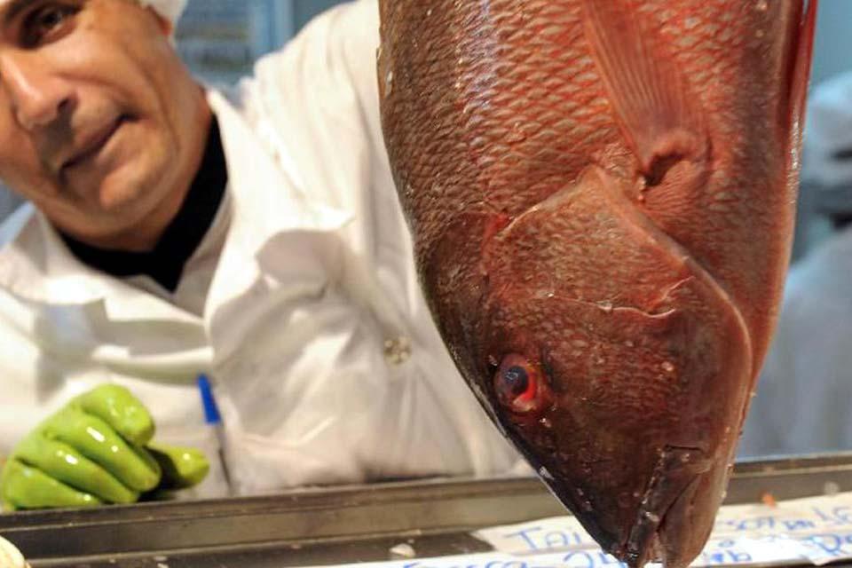 Governo qualifica terminais pesqueiros públicos para privatização