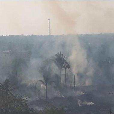 Quase 500 focos de queimada são registrados na primeira semana de agosto