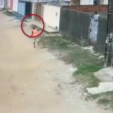 BRUTAL – Flanelinha é flagrado matando cachorro de rua a facadas – VÍDEO