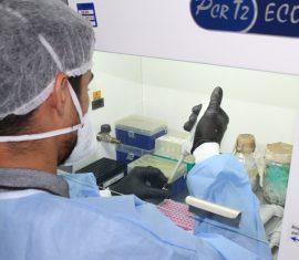 Lacen e Fiocruz reforçam parceria para a extração de material genético e diagnóstico da Covid-19