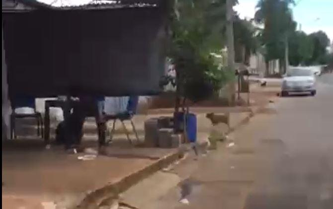 Homem endemoniado esfaqueia esposa até a morte em bar; veja vídeo