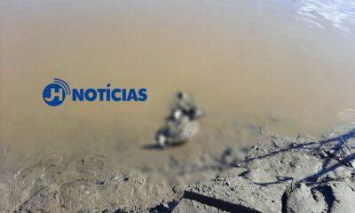 Ossada humana é encontrada por pescador no Rio Madeira